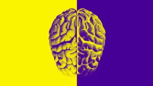 كيف يتحيز الذكاء الاصطناعي ولماذا يصعب إصلاحه؟