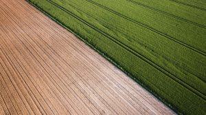 عذراً من مناصري الزراعة العضوية... يبدو أنها أكثر ضرراً للمناخ