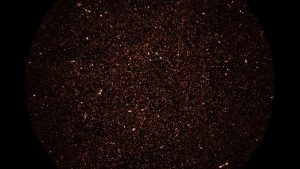 كل بقعة ساطعة في هذه الصورة الجديدة تمثل مجرة بعيدة
