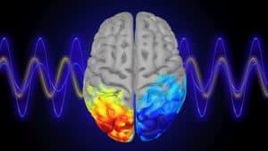 دراسة حديثة تكشف تأثير موجات ألفا على التركيز