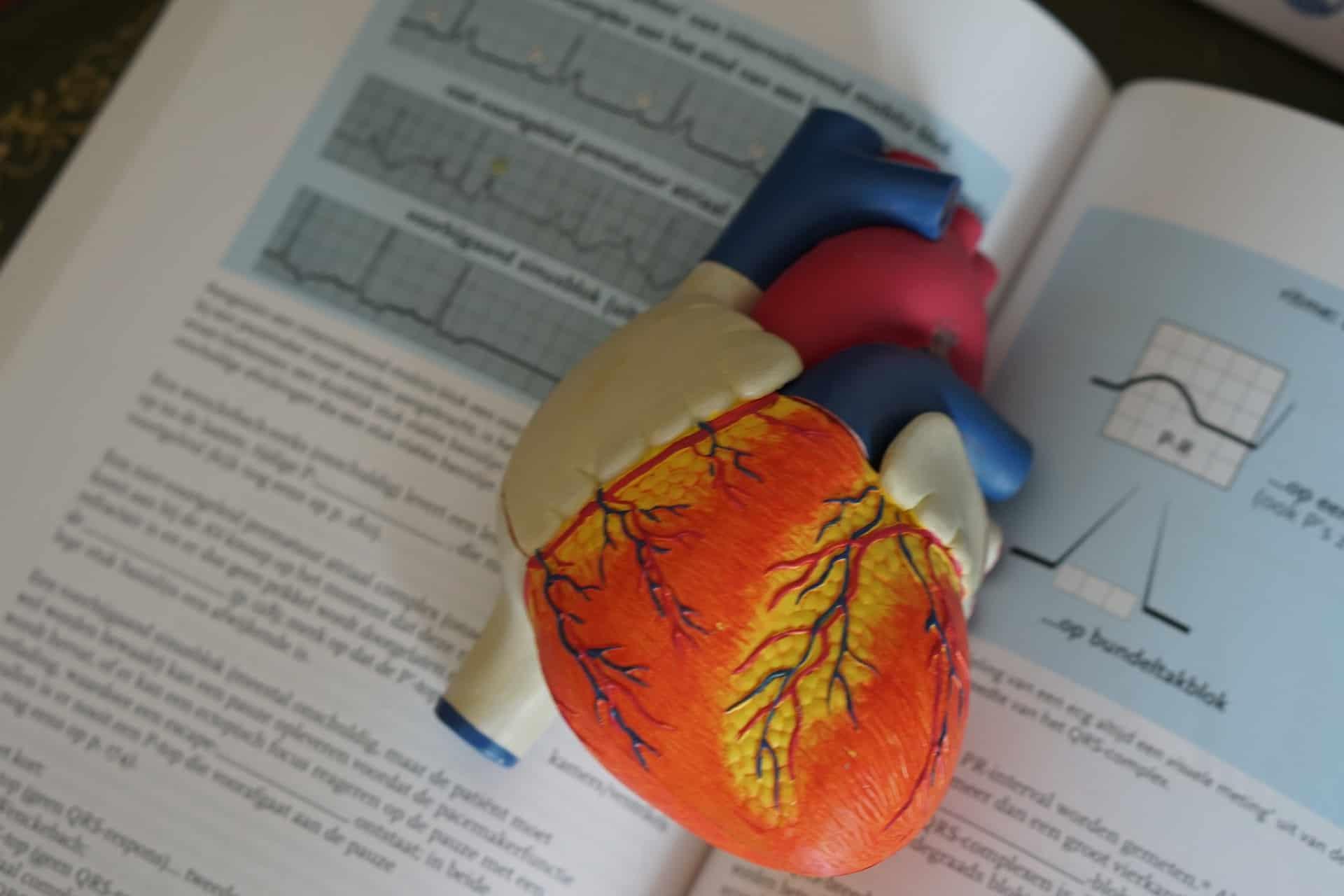 تكنولوجيا كمومية جديدة واعدة في تشخيص وعلاج أحد أمراض القلب