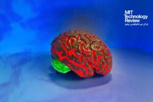الدماغ البشري يُقدم مصدر إلهام جديد لتعزيز ذاكرة الذكاء الاصطناعي