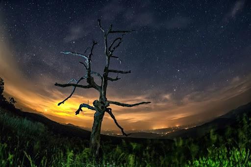 التلوث الضوئي يسيطر تماماً على السماء