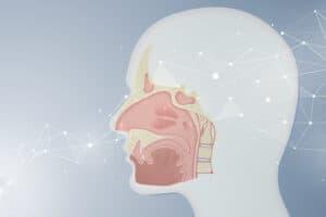 الشبكات العصبونية الاصطناعية تُعلّم نفسها شم الرائحة كخلايا الدماغ تماماً